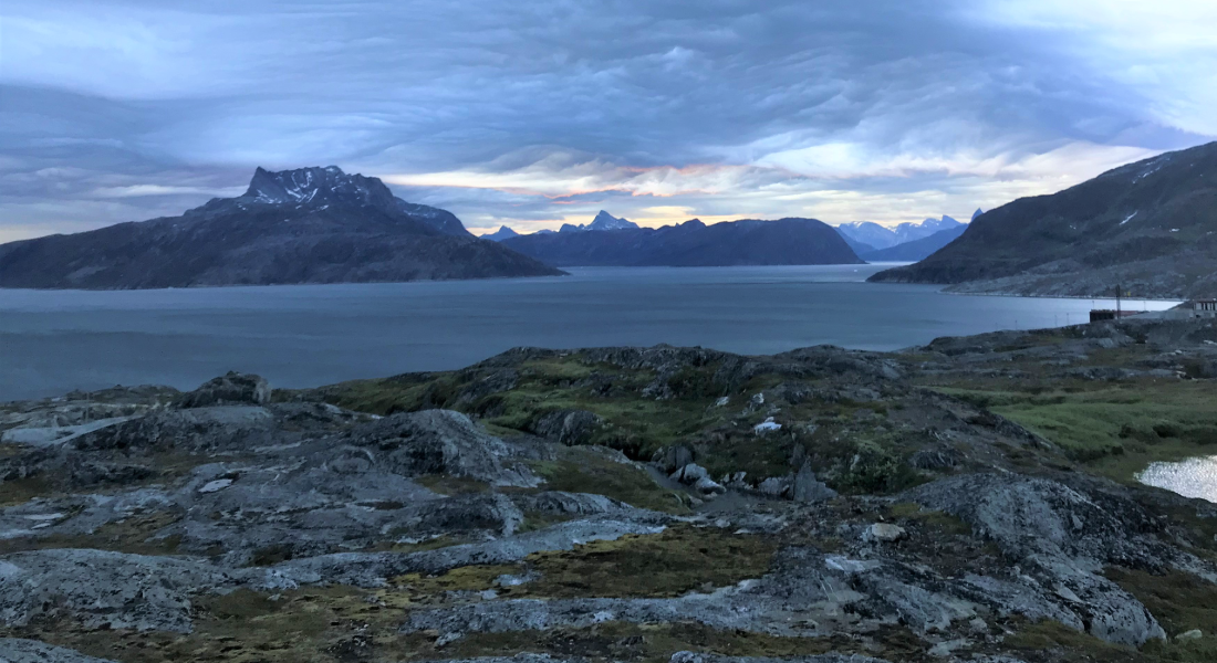 Fjord view in Greenland. (Photo: M.T. Rosing)